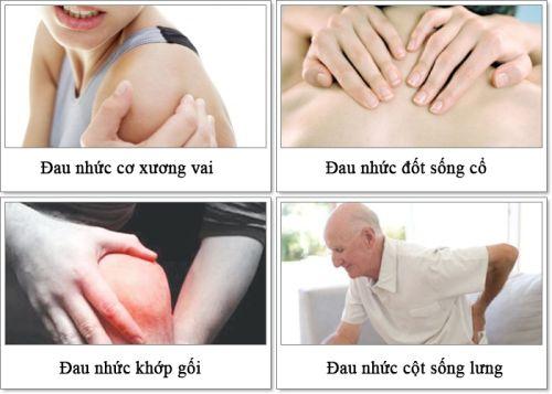 Glucosamine giúp hỗ trợ điều trị các chứng bệnh đau nhức thoái hóa xương khớp