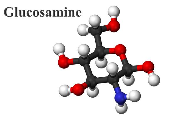 Glucosamine là một dạng đường amino có trong cơ thể người